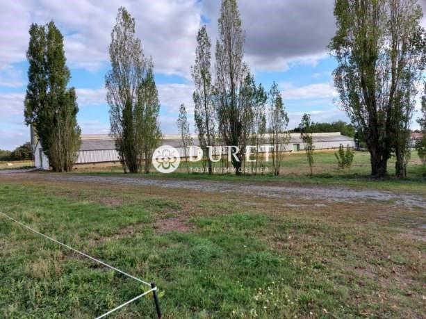 Acheter Entrepôt Entrepôt, Saint-Hilaire-de-Loulay 2000 m2 - VP824-DURET