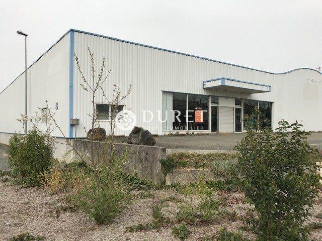 Louer Local professionnel Local professionnel, La Roche-sur-Yon 2450 m2 - LP986-DURET